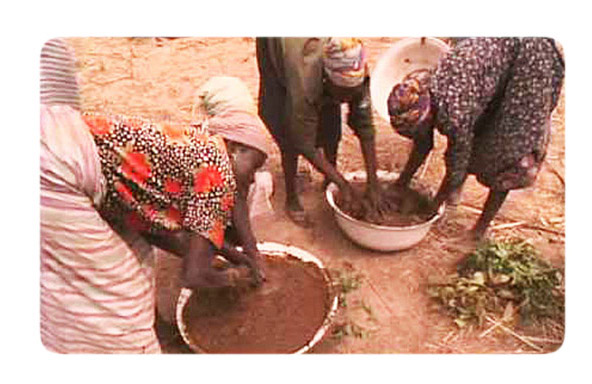 mujeres africanas adobe